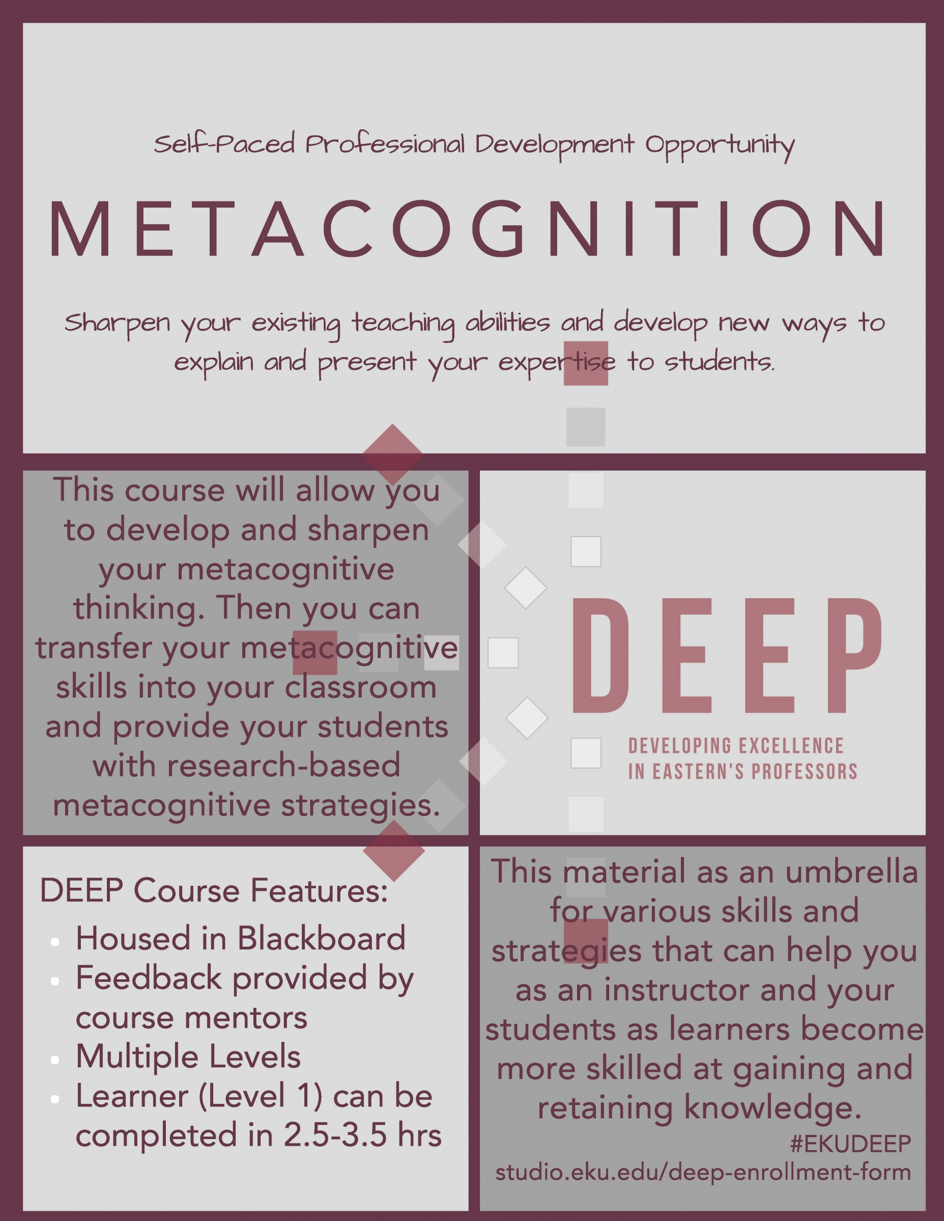 DEEP Metacognition Flyer