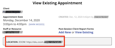 Zoom Link on Appointment Form